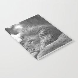 Lion in Love Notebook