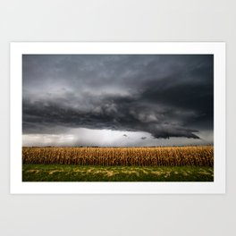Corn Field - Storm Over Withered Crop in Southern Kansas Art Print