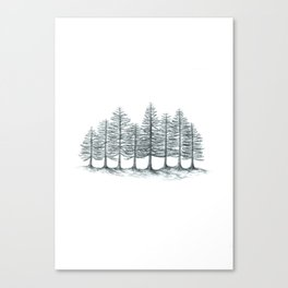 Old Pines  Canvas Print