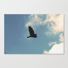 The Flying Bird Canvas Print