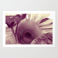 sunflower Art Prints featuring Sunflower by Laake-Photos