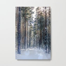 Sun forest Metal Print