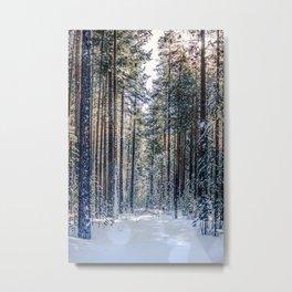 Sun forest Metal Print