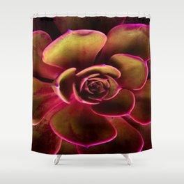 MAGENTA TINGED JADE SUCCULENT ART Shower Curtain