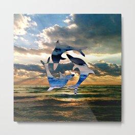 Florida Dolphin Sunset Metal Print
