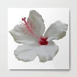 Pure White Hibiscus Tropical Flower Metal Print
