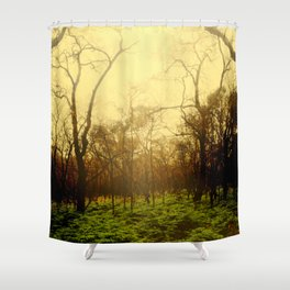 Lambent Woods Shower Curtain