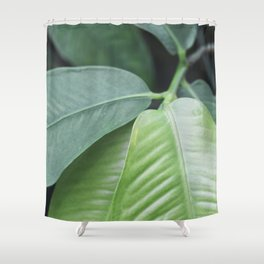 Botanic Touch Bold Shower Curtain