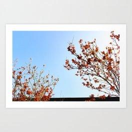 Sakuraesque Art Print