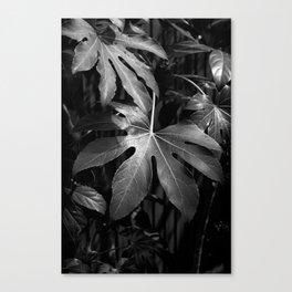 Leaves, Hida-Takayama, Japan Canvas Print
