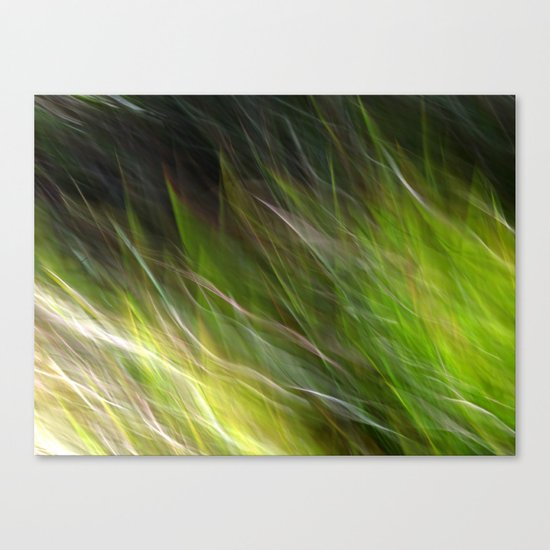 Watching the Wind Blow #2 Canvas Print
