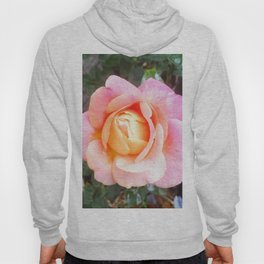 Chicago Peace Rose Hoody