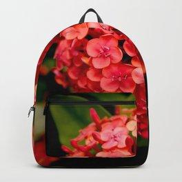 Maui Red Backpack
