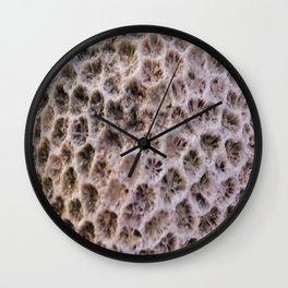 Macro image of a coral rock Wall Clock