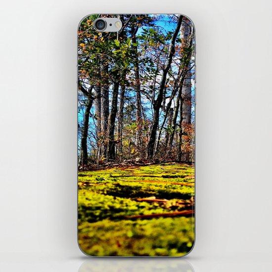 Across The Moss iPhone Skin