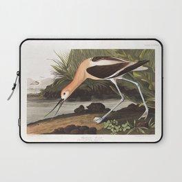American avocet, Birds of America, Audubon Plate 318 Laptop Sleeve