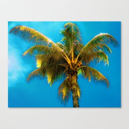Sunlight Strikes the Coconut Palm Canvas Print