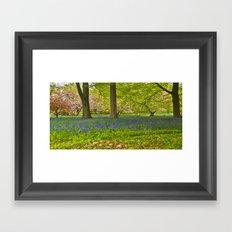 Blossom & Bluebells Framed Art Print