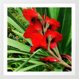 Chic Flame-Red Flower in Garden Art Print