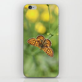 Small pearl-bordered fritillary and buttercups iPhone Skin