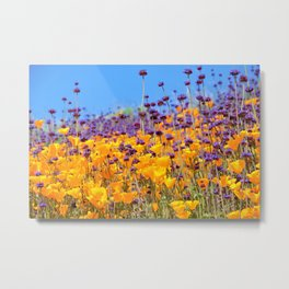 Orange Poppies and Purple Wildflowers with Butterfly (2) by Reay of Light Metal Print