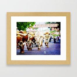 Texas Stockyards Framed Art Print