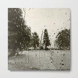 Cypress in the Rain Metal Print
