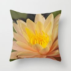 Water Lily Bloom Throw Pillow