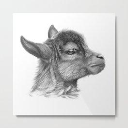 Goat baby G099 Metal Print