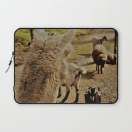 Point of View Laptop Sleeve