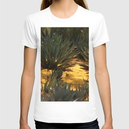 Palo Brea Blossomes Covering Agave Gardens T-shirt