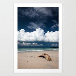 Beach driftwood and dark blue sky Art Print