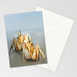 Two Pairs of Eyes Stationery Cards