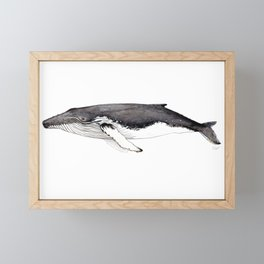 North Atlantic Humpback whale Framed Mini Art Print