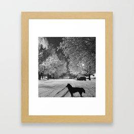 Kuma In Winter Framed Art Print