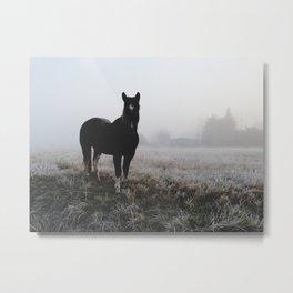 Frosty Klamath Horse Metal Print
