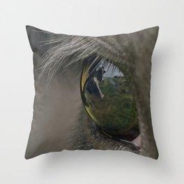 Eye for Cows Throw Pillow