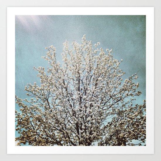 Blooming Tree Art Print