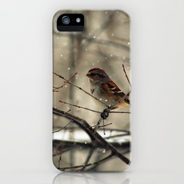 Winter friend. iPhone Case