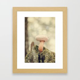 Woodland Mushroom Framed Art Print