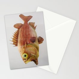 Puzzled Fish Stationery Cards