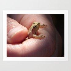 tree frog 2016 Art Print