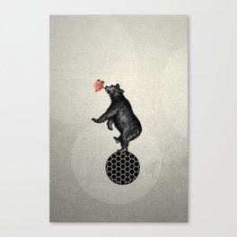 bear balance Canvas Print