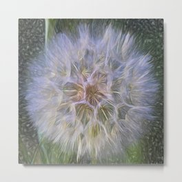 To Wish Upon A Breeze Metal Print