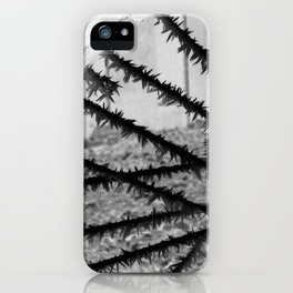 Winter spoke its intentions... iPhone Case