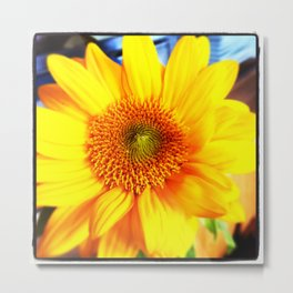 Bright, Yellow, Flower from the Northwest Metal Print