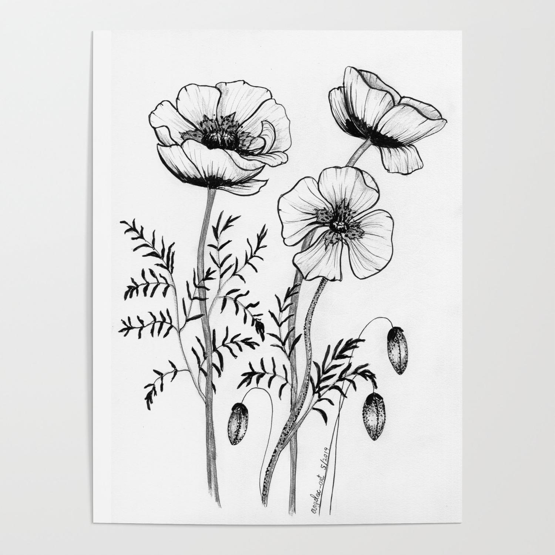 Poppy Line Art Poster by AngelaC Art
