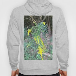 A Bee on a Yellow Flower Hoody