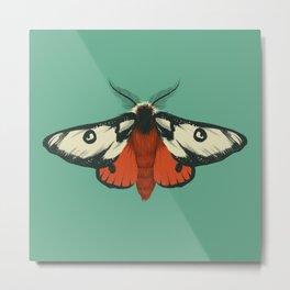 Silk Moths Metal Print