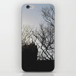 Live in Denial iPhone Skin